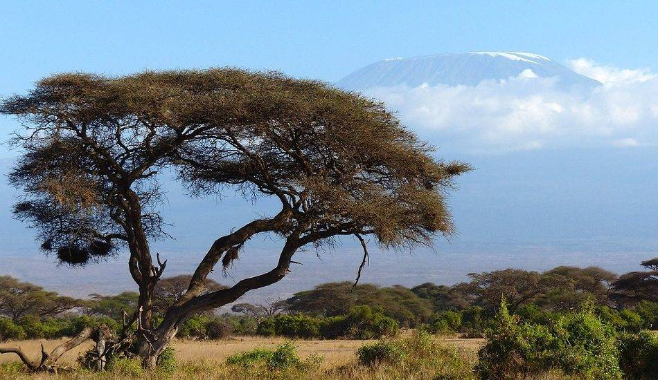 What is the weather like in Kenya?